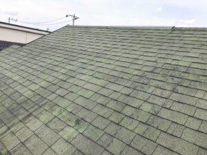 藻や苔がついた施工前の屋根