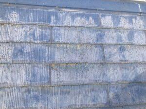 藻や苔がついた屋根