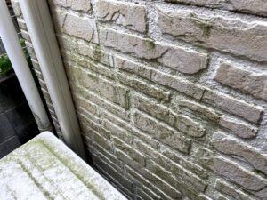 施工前の苔のついた外壁