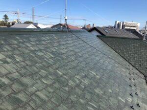 藻と苔のついた緑色の屋根